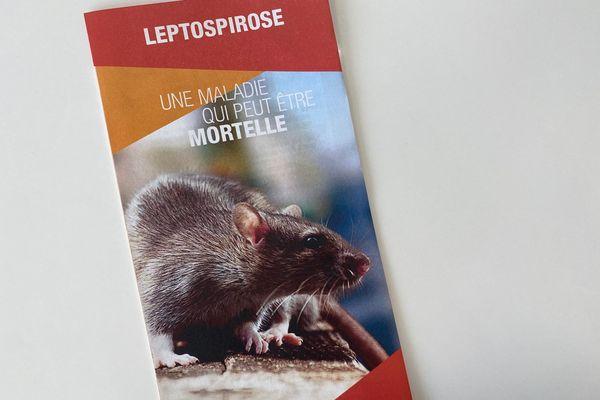 Dépliant leptospirose