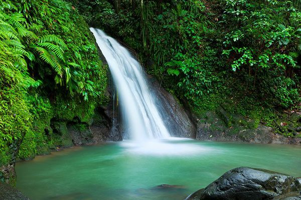 Chute d'eau Guadeloupe