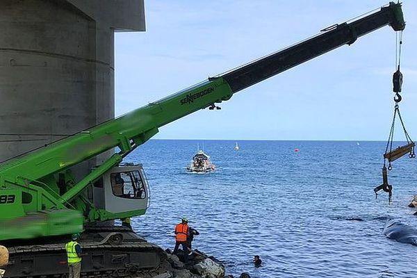 Grue de sauvetage pour la baleine oct 2018