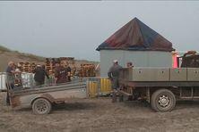 Les bénévoles d'Eklectik préparent le site du Dunefest depuis plusieurs jours.