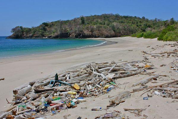 Plage polluée par du plastique