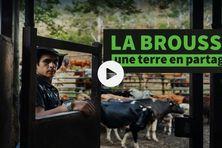 La brousse, une terre en partage , un film écrit et réalisé par Dominique Roberjot.
