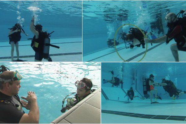 Stage de plongée : l'initiation avant l'immersion