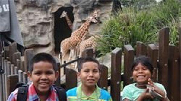 Amérindiens girafes