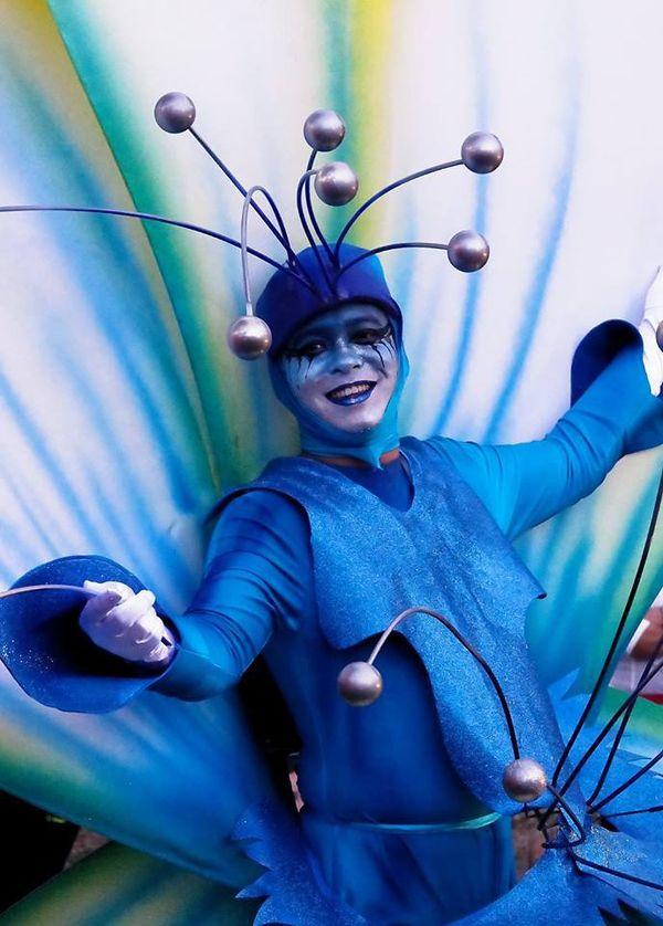 Carnaval 2017 de Nouméa