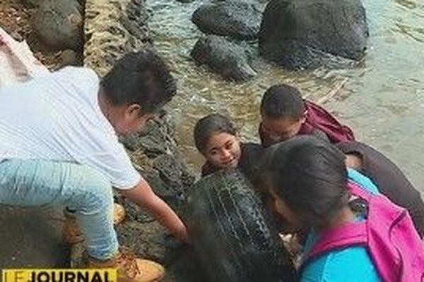 enfants qui sortent un pneu de l'eau