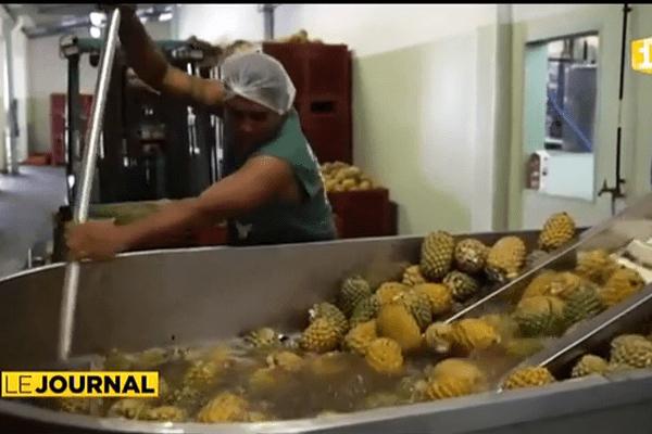 Le « brut d'ananas » bientôt commercialisé