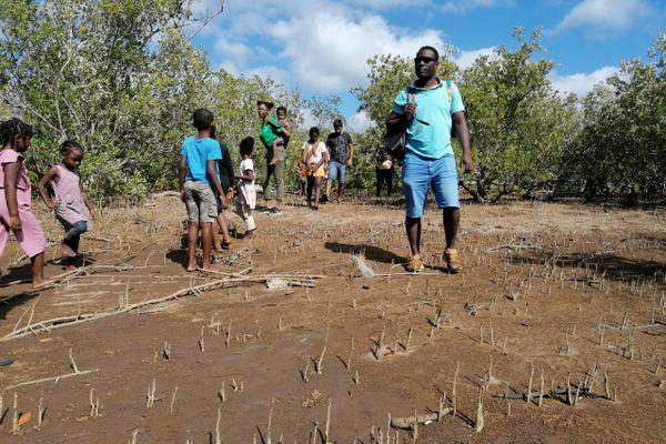 Mangrove Poroani fête de la mer et des littoraux