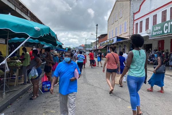 Cayenne retrouve ses promeneurs