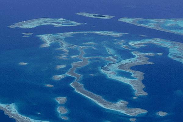 Mer de corail