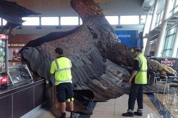 l'aigle géant du Hobbit à l'aéroport de Wellington