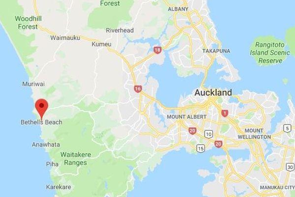 Les paquets ont été découverts sur une plage proche d'Auckland