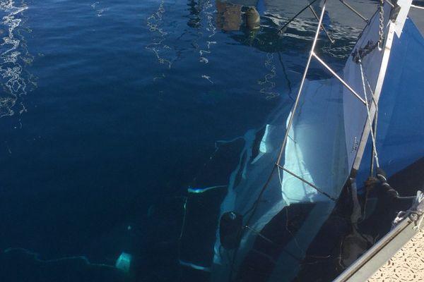 bateau coulé marina Taina