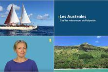 Décryptage sur les îles australes