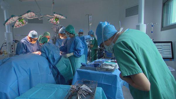 Mission reconstruction mammaire, 23 septembre 2019