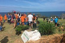 300 arbres de forêt sèche ont été plantés ce samedi 24 avril au Ouen Toro