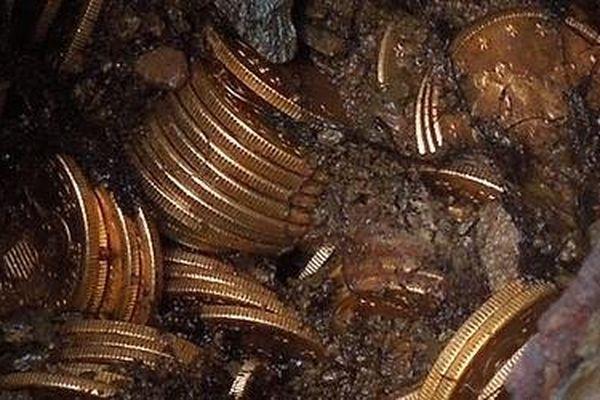 Une partie du trésor découvert dans son jardin par un couple de Californiens