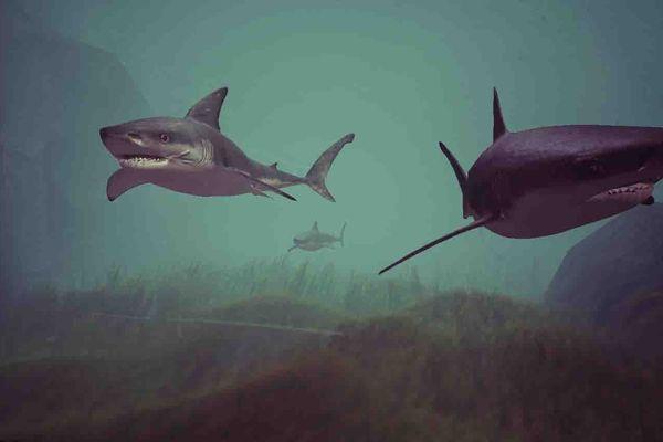 Requins blancs de la modélisation de Sub Oceana