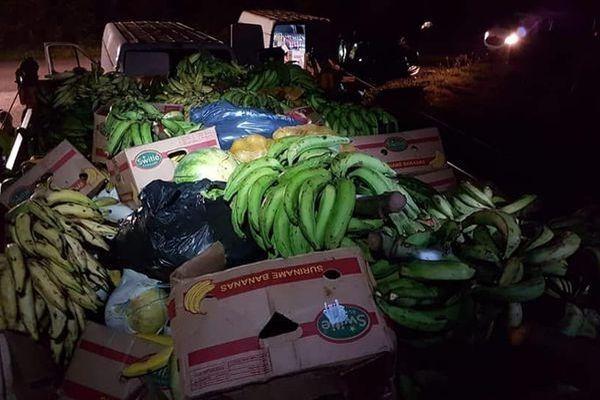 Bananes saisies