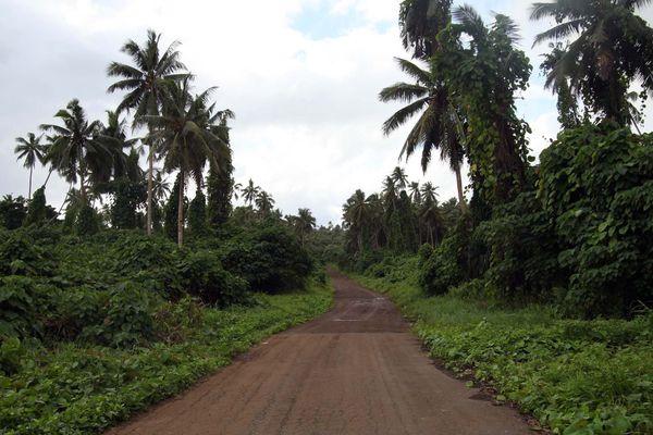 Une route normale vue de loin