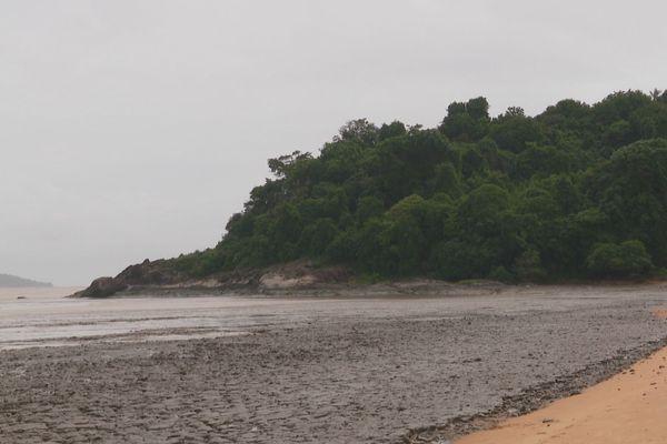 Environnement : la vase est de retour sur nos côtes