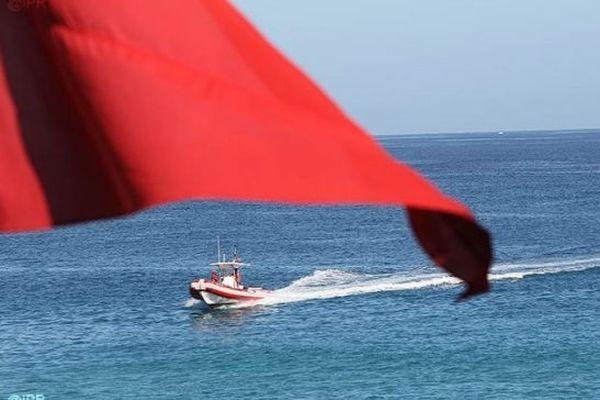 Le dispositif de pêche post observation requin est activé.