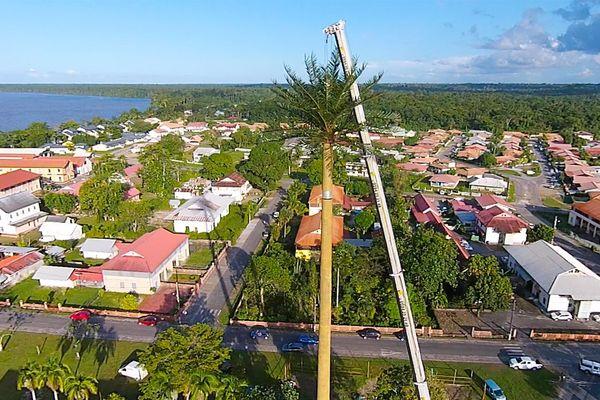 Antenne palmier à Saint-Laurent