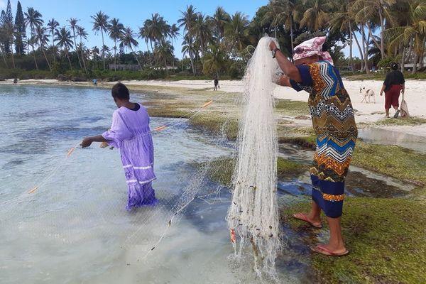Pêche traditionnelle aux maquereaux Lifou