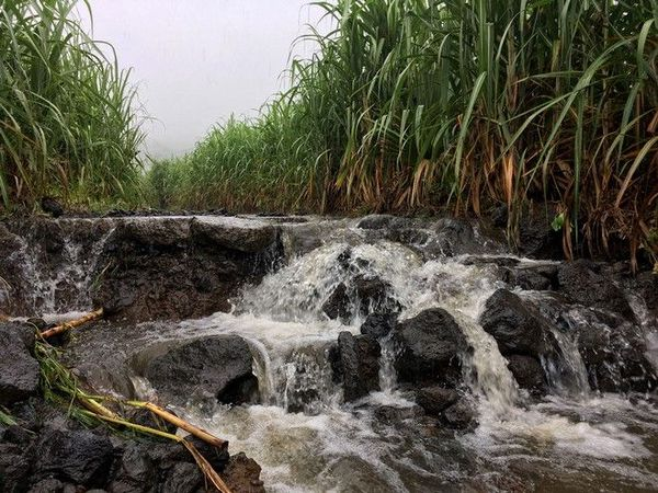 pluies soutenues dans le sud ravine ango saint-philippe 220120