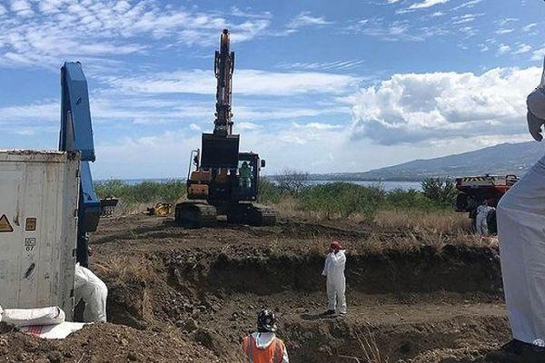 La baleine Billy sera enterrée dans l'ouest de La Réunion
