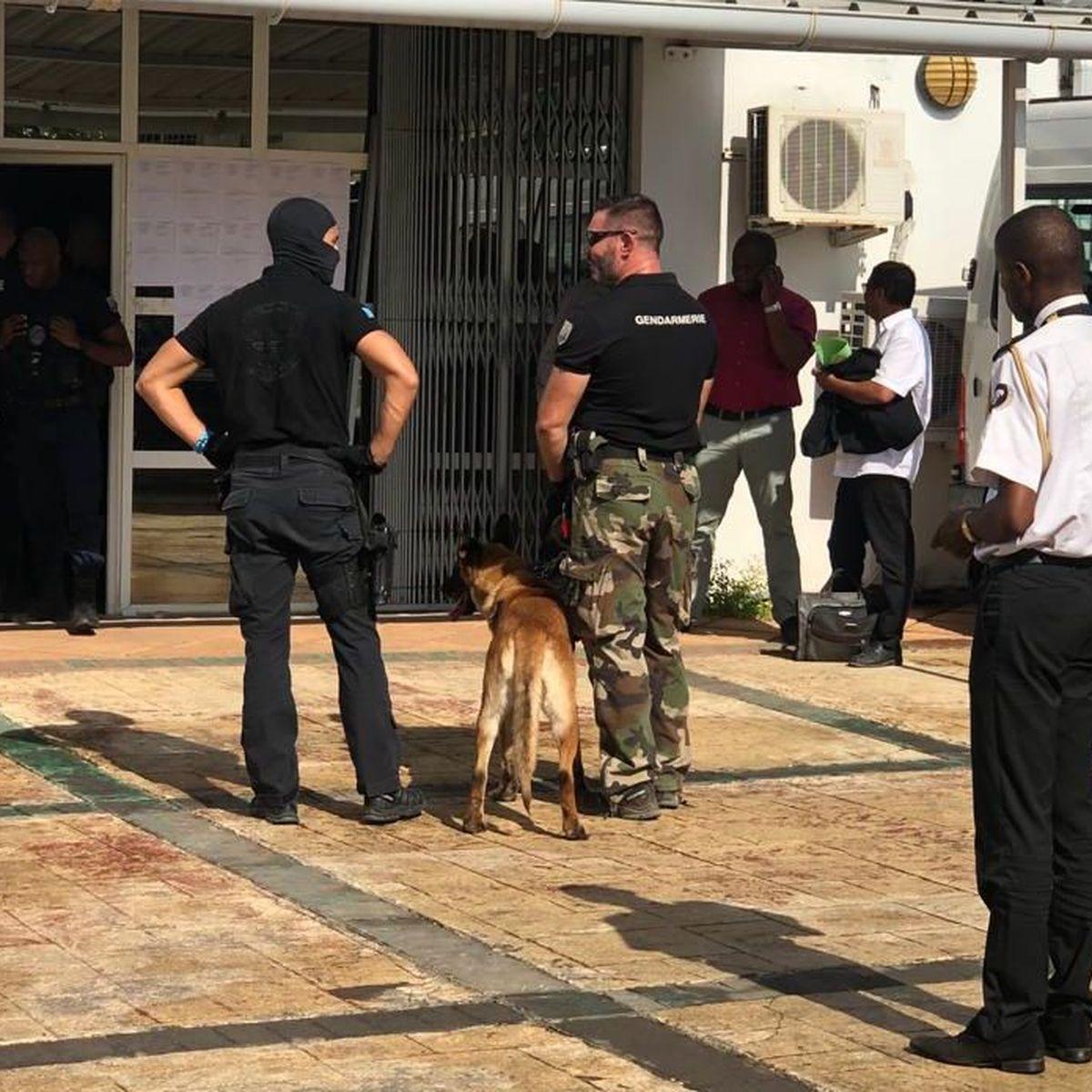 Quatre membres de la brigade anti-Bac ont été condamnés à des peines d'emprisonnement ferme