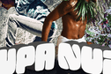 Upa Nui : le spectacle et les résultats ...