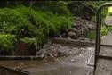 EXTRAIT JT: La sécheresse sévit en Polynésie.