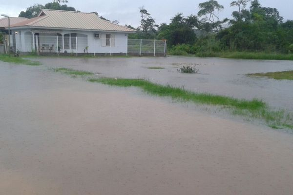 Maya inondation