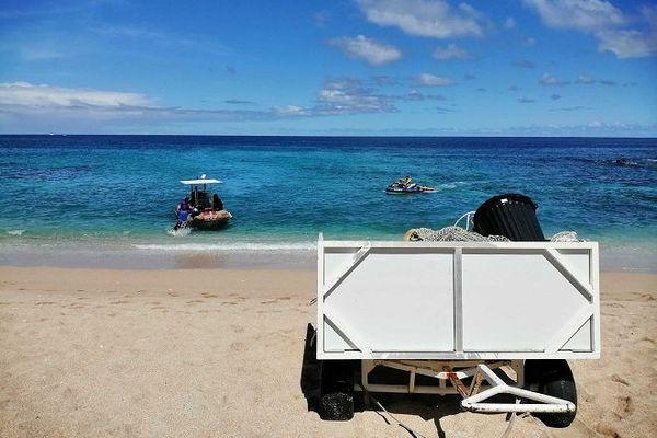 Le filet de protection à nouveau en place sur plage de Boucan-Canot