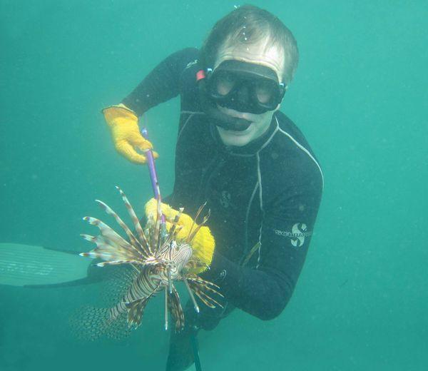 Eric Rolland pêchant un poisson-lion en apnée