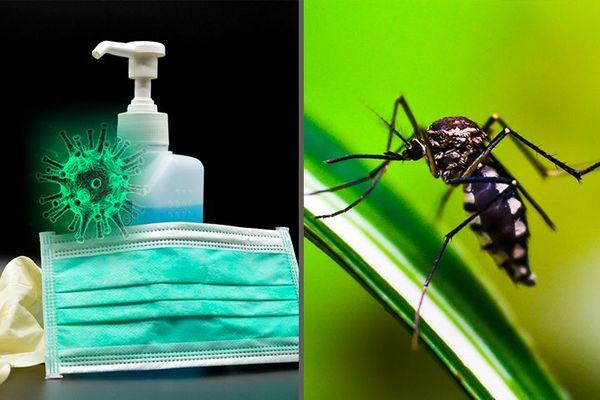Dengue et Corona