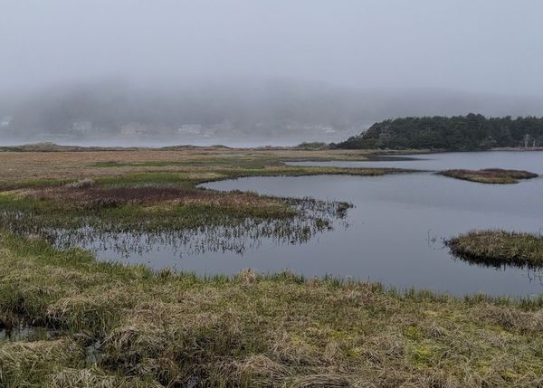 paysage SPM