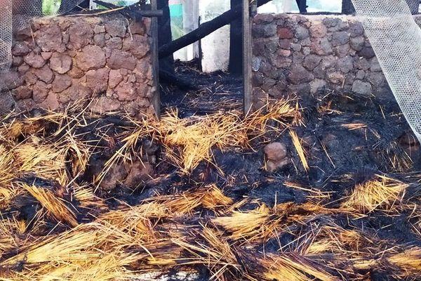 Case du sénat coutumier en feu, 9 août 2020