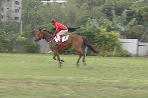 En pareo, en amble attelé ou au galop, les chevaux ont couru