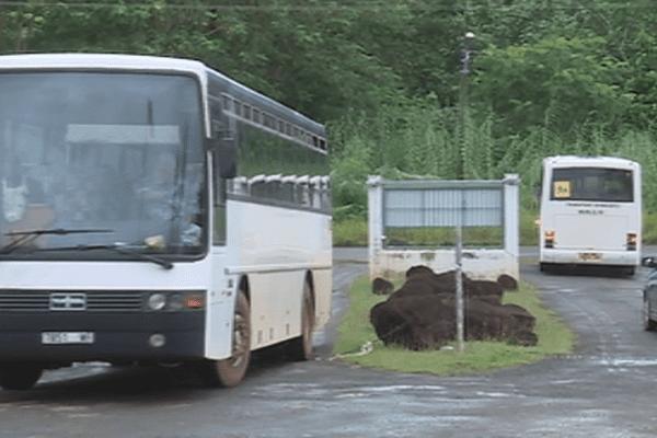 Transport scolaire