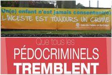 Prise de position des associations féministes de Martinique (l'UFM et Culture Egalité) contre l'inceste et la pédophilie (février 2021)