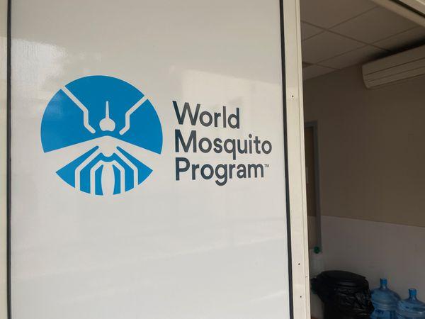 World Mosquito Program. Dengue