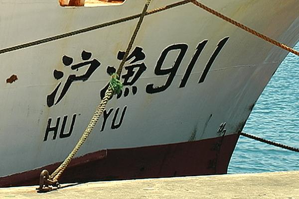 Yu hu pêche 05/11/2013