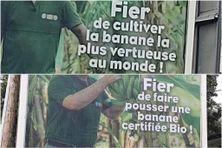 Campagne publicitaire controversée de l'l'UGPBAN - Union des Groupements de Producteurs de Bananes de Guadeloupe et de Martinique (janvier 2021)