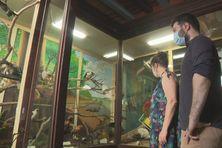 A l'occasion des Journées européennes du Patrimoine, les visiteurs pourront (re)découvrir  les expositions permanentes enrichies de nouvelles acquisitions patrimoniales.