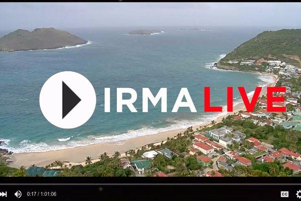 Irma Live