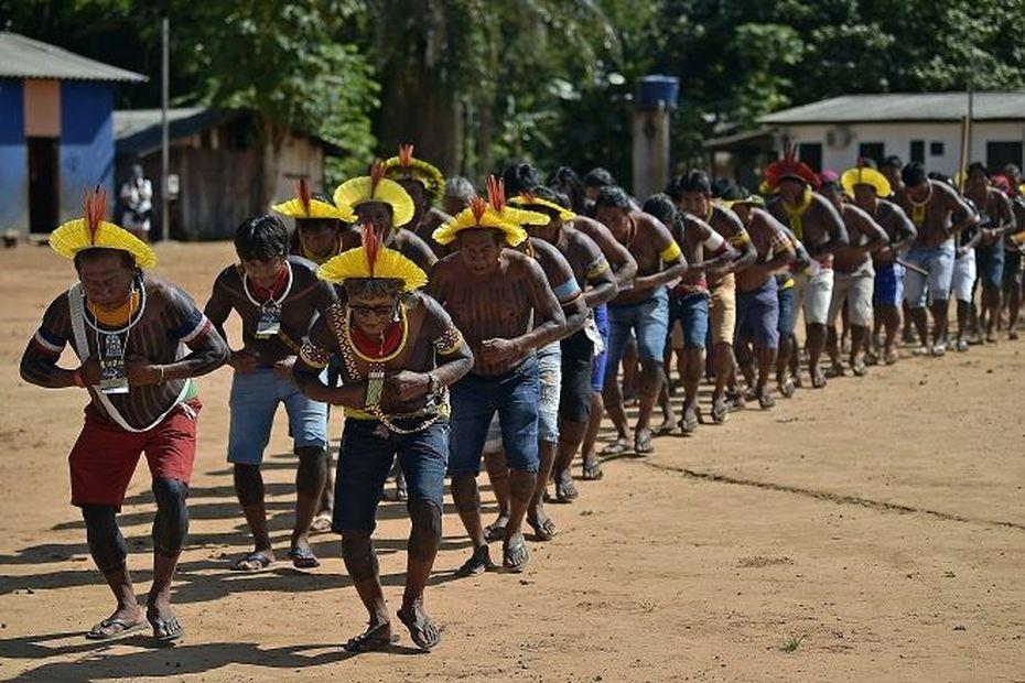 Les peuples amérindiens du bassin amazonien payent un lourd tribu face au coronavirus - Guyane la 1ère