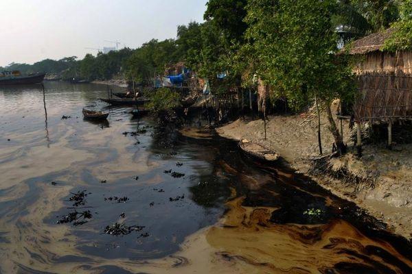 Marée noire Bengladesh