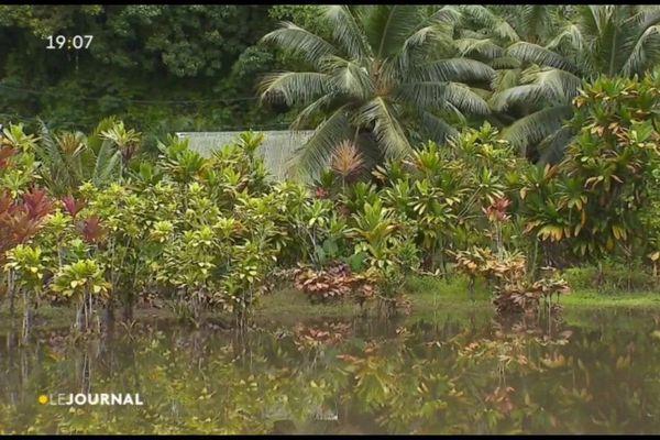 Inondations à Faaone : le désarroi des riverains